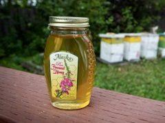 Полезные свойства, противопоказания и применение кипрейного меда
