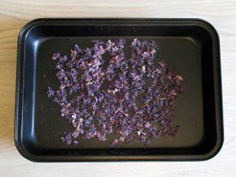 Засушенные в духовке цветы иван-чая