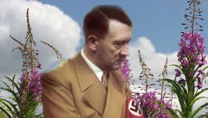 Почему Гитлер уничтожил фабрику по производству иван-чая?