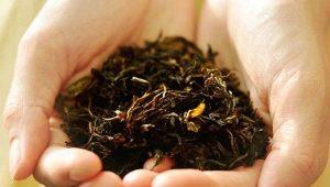Как приготовить иван-чай в домашних условиях?