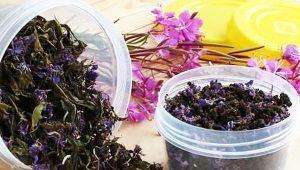 Как сушить иван чай в домашних условиях?