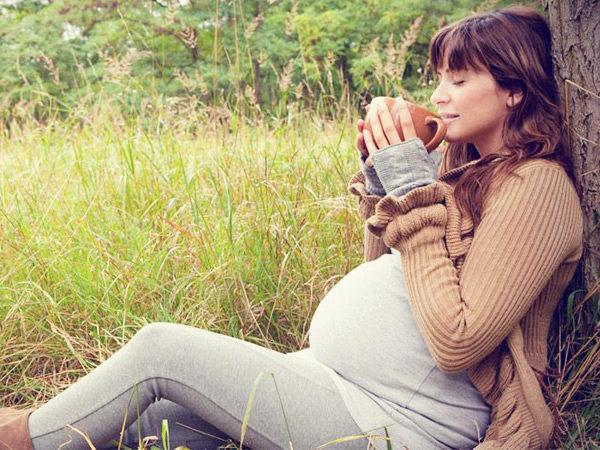 Беременность и иван чай