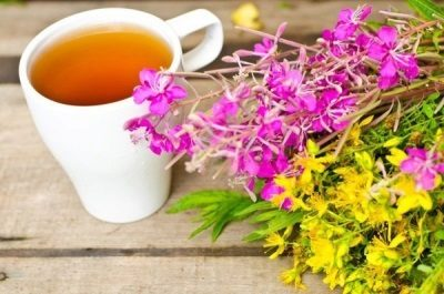 Иван-чай чай