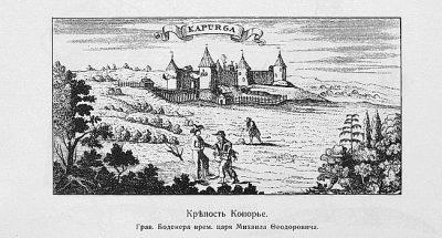 Иван-чай в Копорье