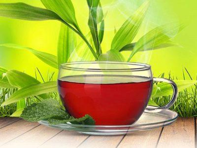Средства на основе иван-чая сбалансируют нервную систему