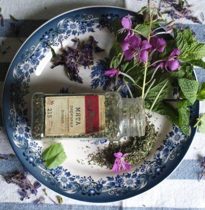 Иван-чай как лечебное средство