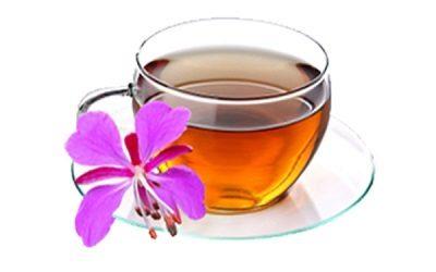 Травяной чай с кипреем