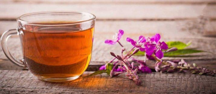 Иван чай гепатит